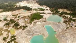 Documentado: o rastro destrutivo do garimpo de ouro