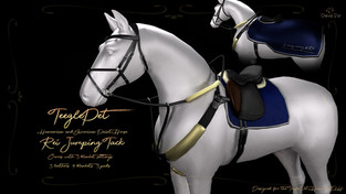 Cheval D'or - Rei/Millie Jumping Tack Set