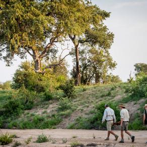 Zafaris Most Remote Walking Trails -  Part 1......