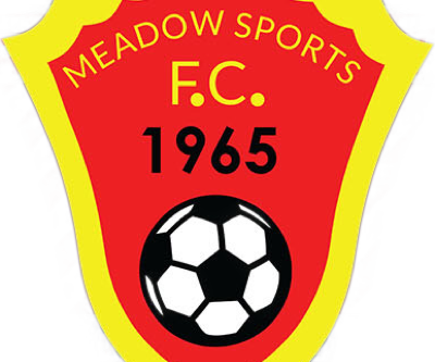 COVID-19 statement from Meadow Sports FC