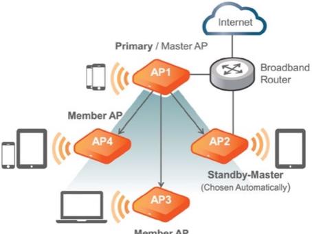 Managed Wireless Networks