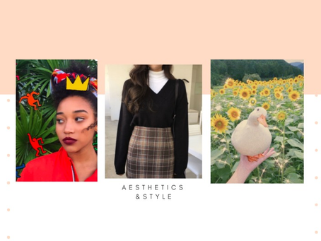 AESTHETICS: The Style of Internet Subcultures