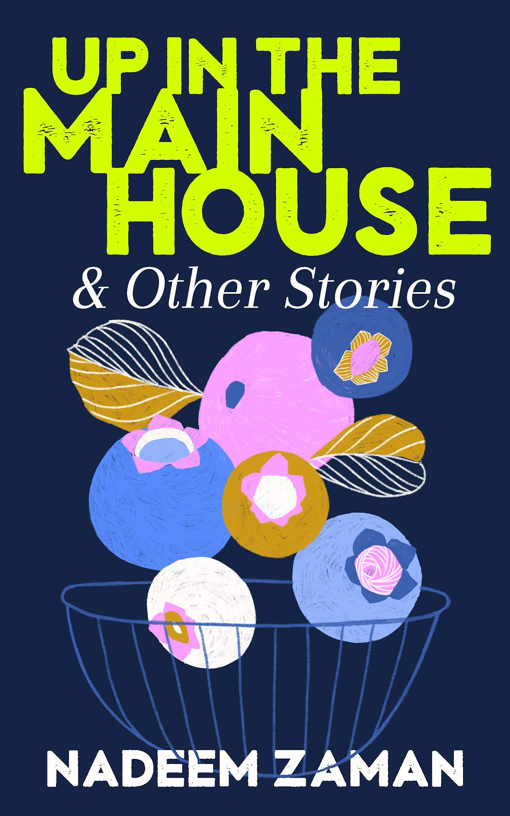 Up in the Main House & Other Stories by Nadeem Zaman : the book slut book reviews thebookslut
