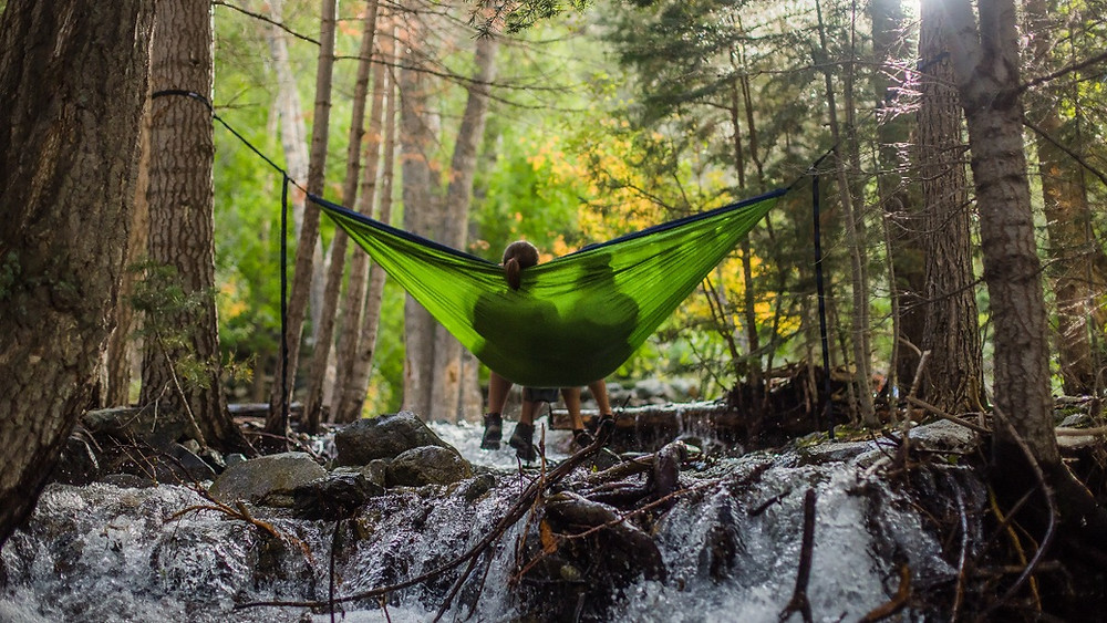 Climate Copers are equipped to face climate change and be sustainable and resilient. Couple in a forest. Hanging on a hammock above a river. Global Warming. Climate Coping.