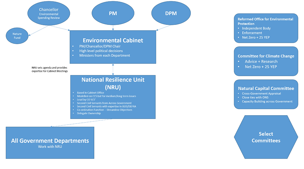 A diagrammatic representation of the governance structure set out in the main text of the blog post.