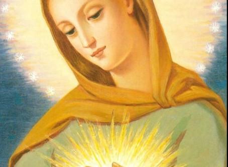 Mensagem de Nossa Senhora Rosa Mística Rainha da Paz em 12/06/2019 em São José dos Pinhais,PR