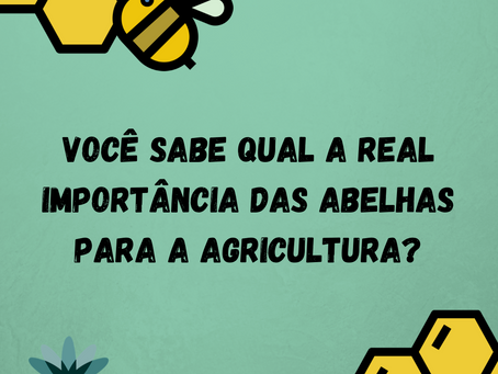 Você sabe qual a real importância das abelhas para a agricultura?