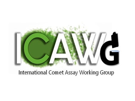WELCOME TO THE ICAWG WEBSITE