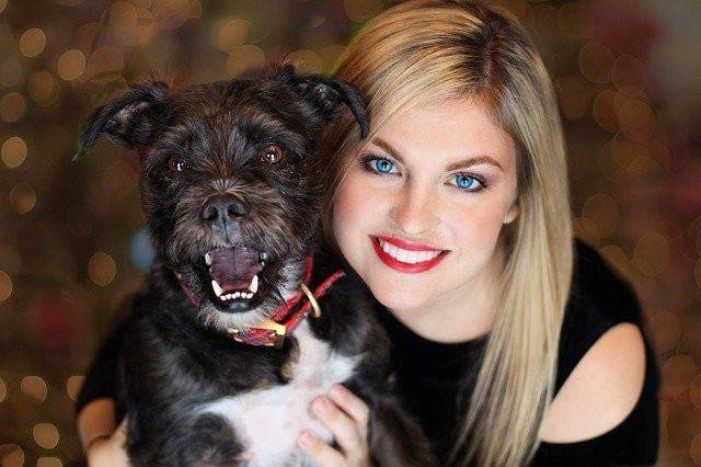 How To Turn Your Hobby Into A Business – Pet Sitting And Pet Boarding