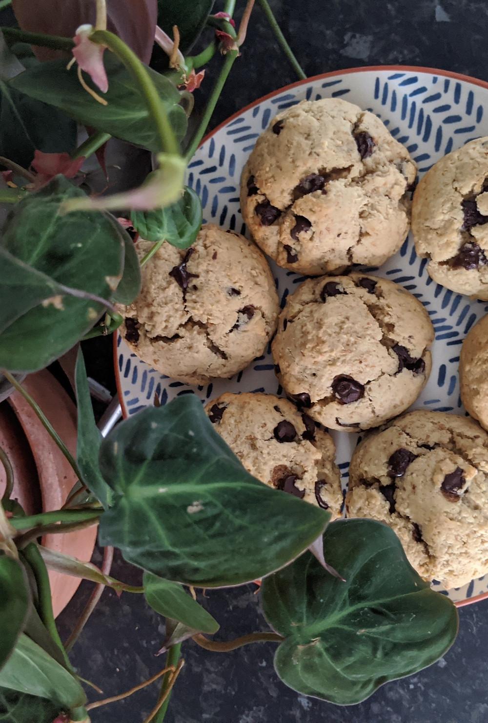homemade cookies, oat pulp cookies, vegan, dairy free, gluten free, homemade, oat milk, zero waste, eco, sustainable cookie recipe
