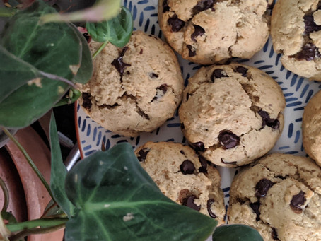 HOW TO MAKE COOKIES USING YOUR OAT PULP