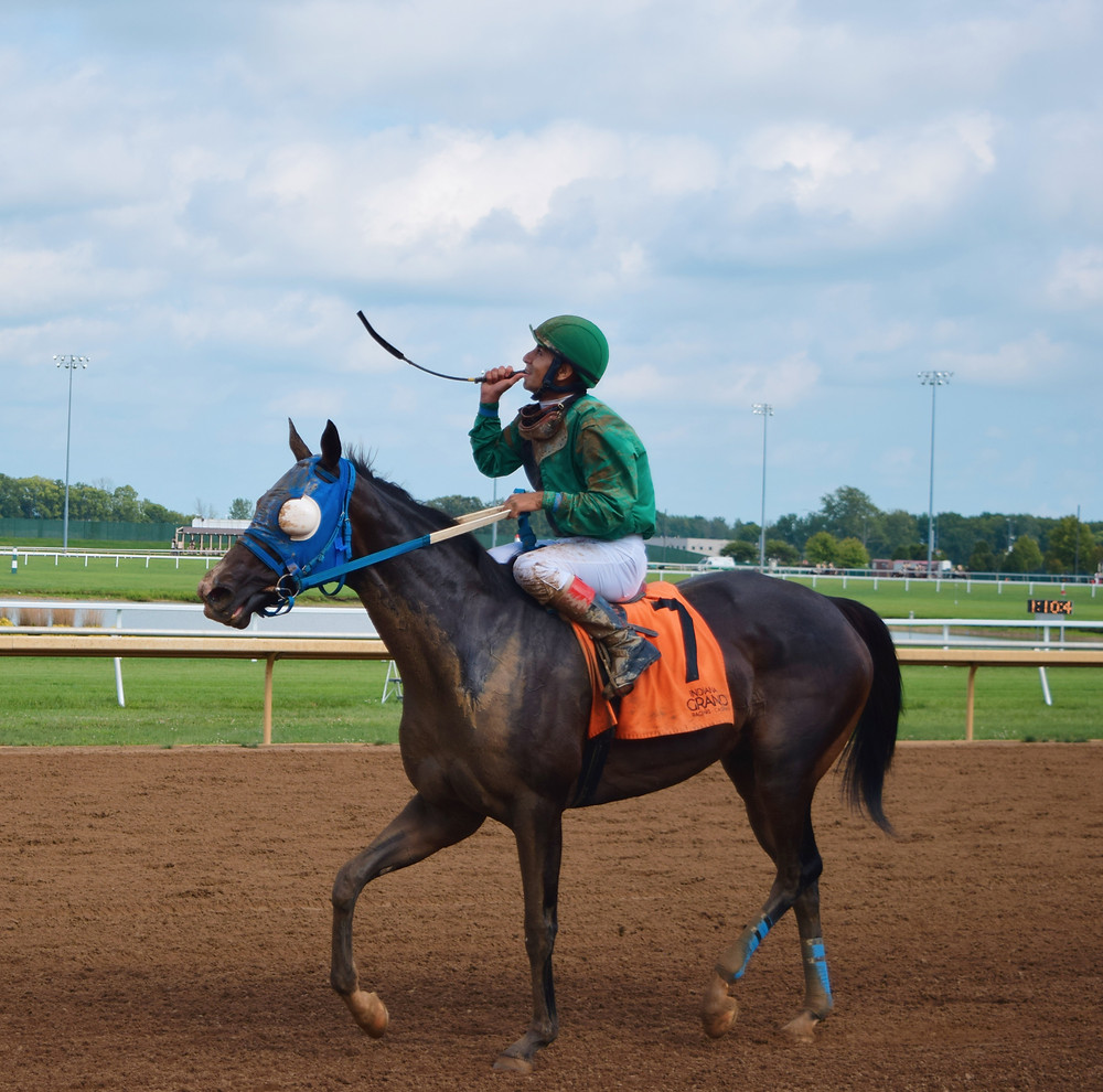 Expect Indy after winning the Shelby County Stakes, Indiana bred, Indiana Horse racing, Indiana Grand Racing & Casino