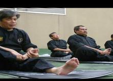 Kelas Senaman Tua & Silat  LIVE FB. Join sekarang!!