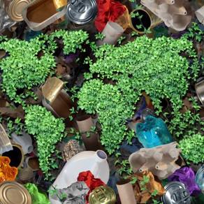 7 empresas que apoyan a no generar basura