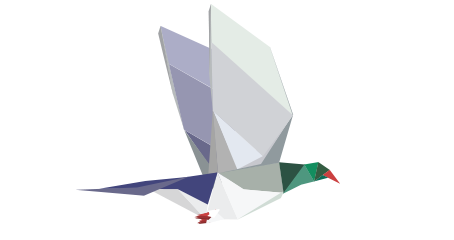 Great Kererū Count 2020