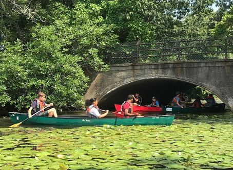 Canoe-O on The Charles
