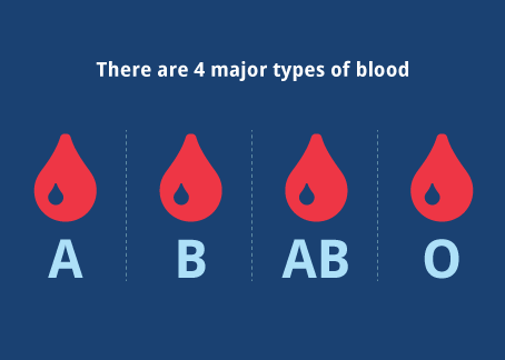 What is Your Blood Type?