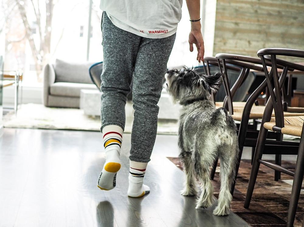 Ways to Walk More Indoors