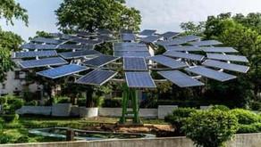 IoT-enabled Solar Power Tree!