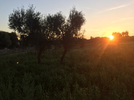 Sonnenaufgang - levata del sole
