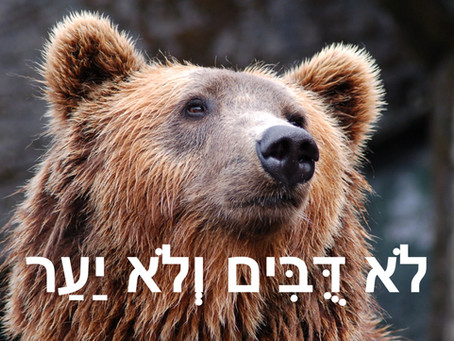 5 Hebrew Sayings Your Should Know
