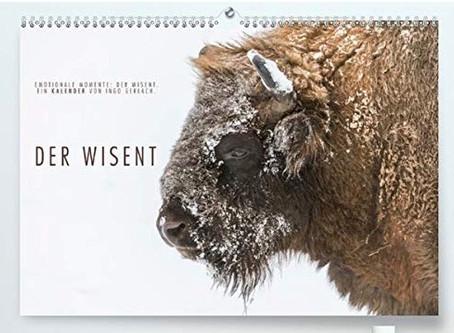 Meine Kalender für 2021.