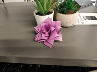 DIY Challenge: Paper Flowers