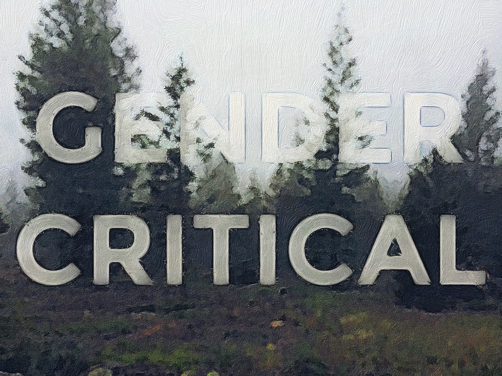 "a painting-style picture of trees in the fog with the words ""gender critical"" imposed as though part of the fog"