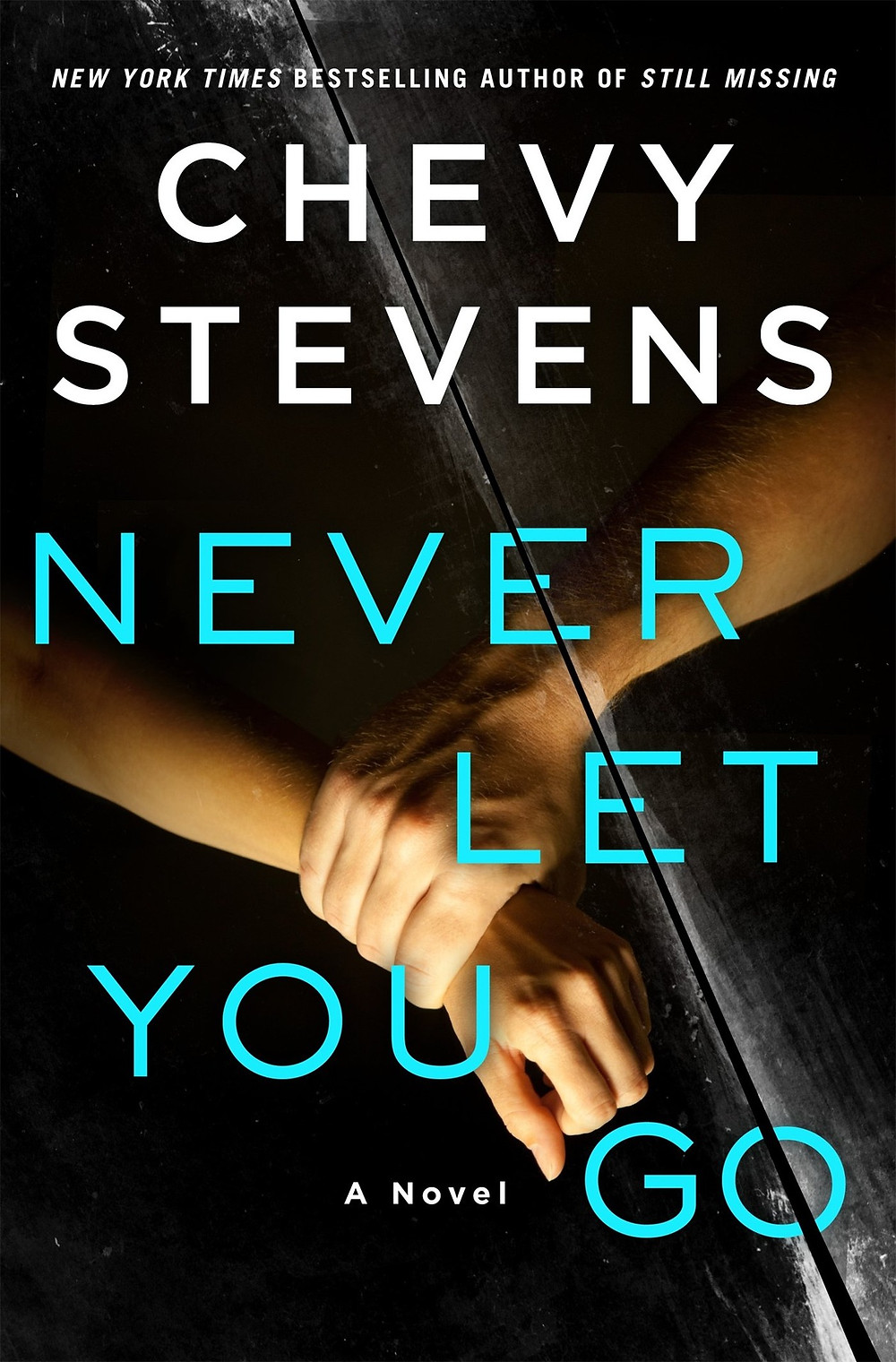 Never Let You Go by Chevy Stevens : the book slut book reviews thebookslut thrillers