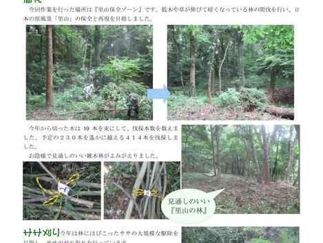 藤沢サンクチュアリ通信 No.13