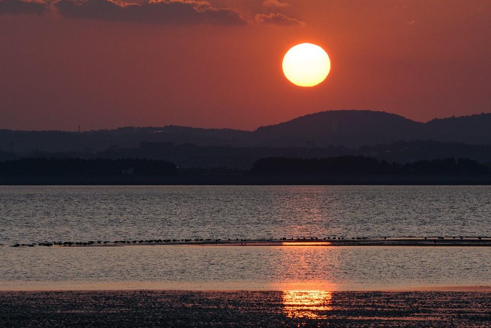 干潟と山に沈む夕日 / Tidal flats and sunset behind a mountain