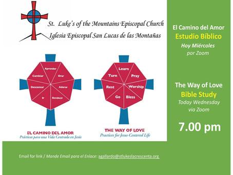 Way of Love Bible Study, July 8