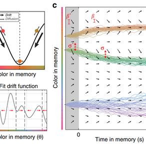 Error Correcting Dynamics in Working Memory