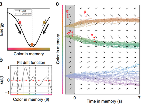 Error Correcting Dynamics in Working Memory