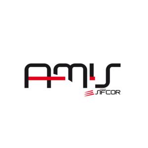 A.M.I.S Ateliers Mécaniques et Industries Spéciales - Management de Transition