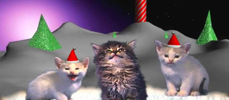Silent Night as performed by cats