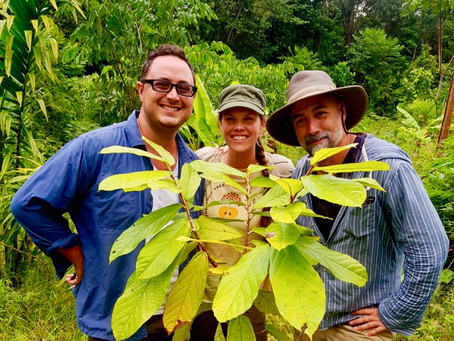 Partnerships, Fruit Trees, and Land Restoration in the Peruvian Amazon, with FTPF's James Kaechele