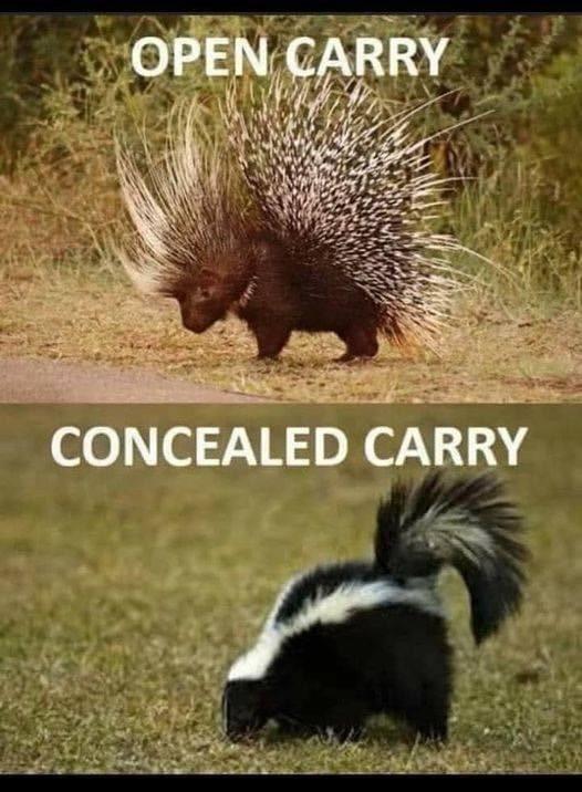 Funny Gun Memes