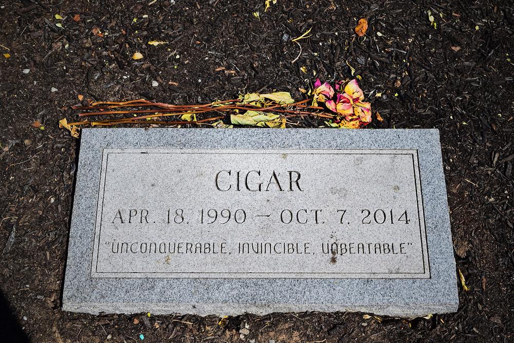 Cigar, Breeders' Cup Classic winner, Kentucky Horse Park Grave