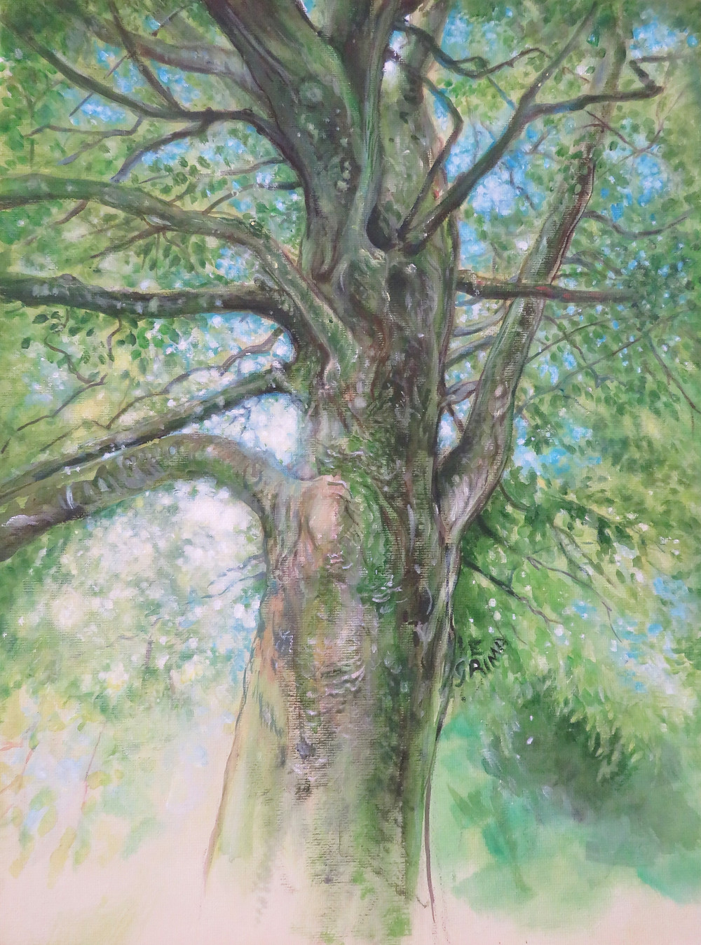 Beech Tree Painting by Little Liz Happy Art