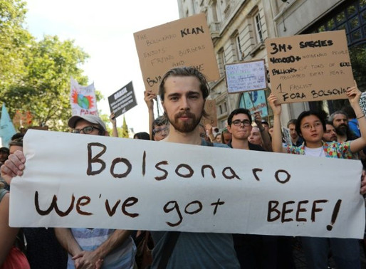 Brazilians call for action on climate change.