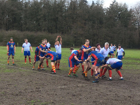 Rugby @ Beernem
