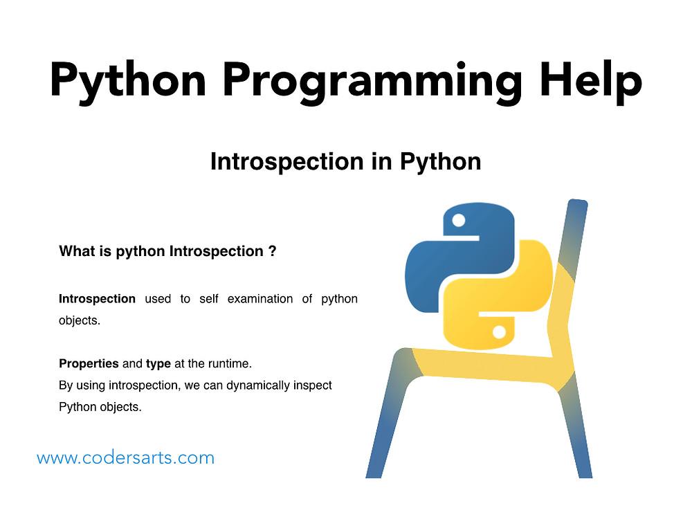 Python Programming Help : Introspection in Python - Codersarts