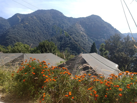 Get Relaxed while looking at the Mountains, Nainital Camping