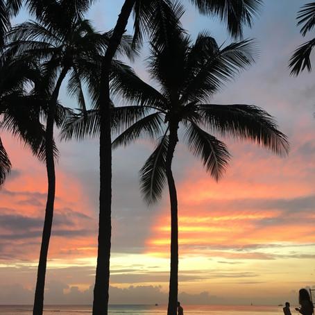 Hawaiian Kombucha🌺