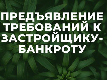 ЗАСТРОЙЩИК-БАНКРОТ, ЧТО ДЕЛАТЬ ДОЛЬЩИКУ