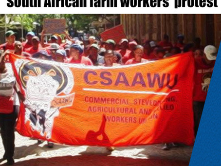 Farmworkers in South Africa take to the streets