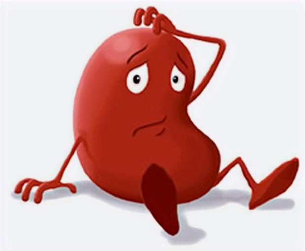 What does kidney failure mean? Causes, signs and treatments