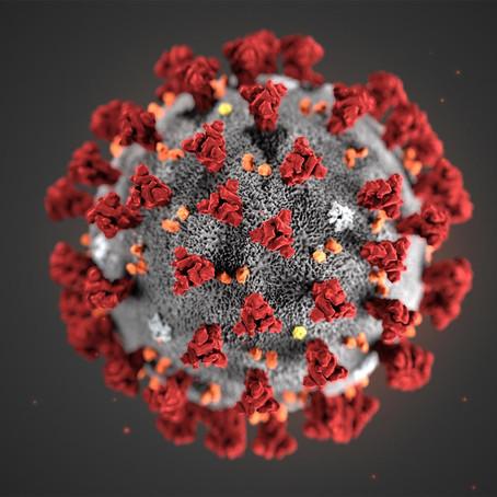 Coronavirus: What Have We Heard Thus Far?