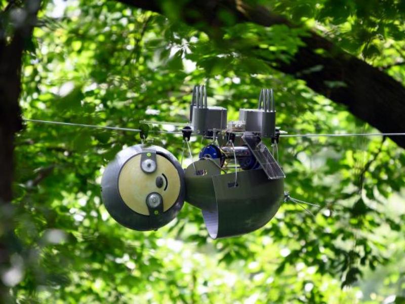 robot biomimétisme SlothBot